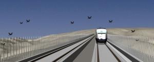 Simulación que representa cómo las nuevas pantallas anticolisión del proyecto Life Impacto Cero modificarían la trayectoria de las aves para que no colisionaran con el tren. Foto: Life Impacto Cero.