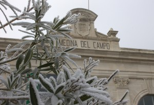 Medina del Campo es el destino de este tren enoturístico por la Ruta del Vino de Rueda. Foto: Jorge Gómez.