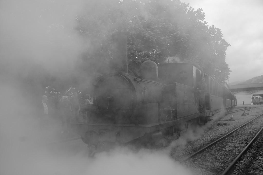 Los viajes en tren histórico son una de las actividades estrella del Museo Vasco del Ferrocarril. Foto: Daniel Luis Gómez Adenis.